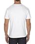 Alstyle AL1301 Adult Short Sleeve T-Shirt