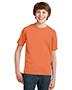 Orange Sherbet - Closeout