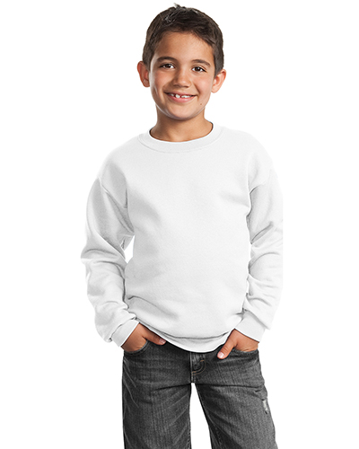 Port & Company PC90Y Boys Crewneck Sweatshirt at GotApparel