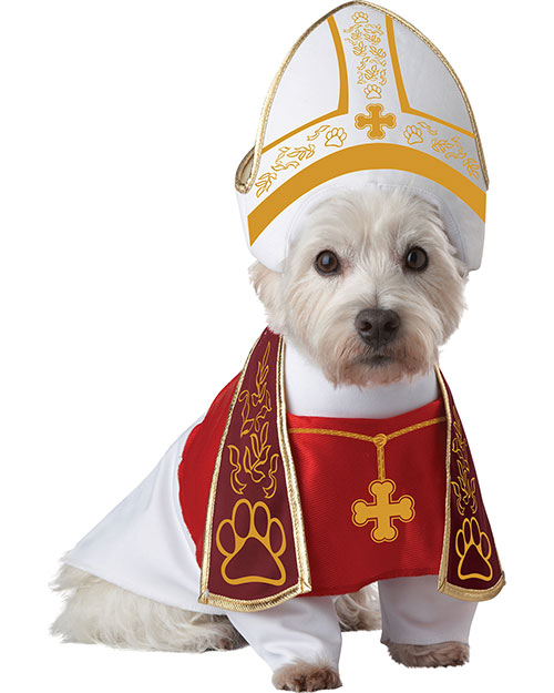 California Costumes PET20127 Unisex Holy Hound Dog Costume at GotApparel