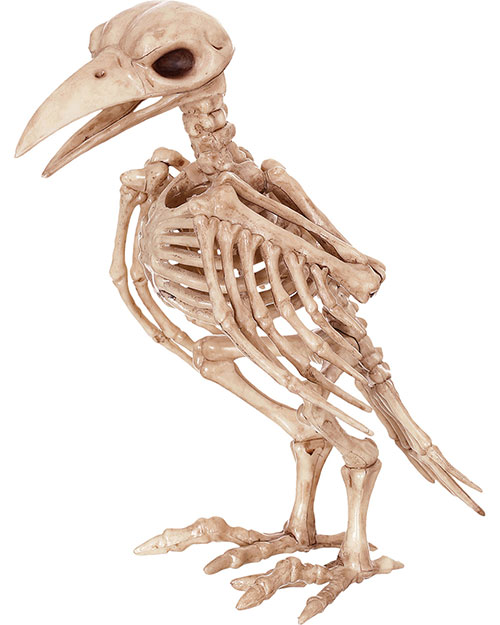 Halloween Costumes SE18119 Unisex Skeleton Raven at GotApparel