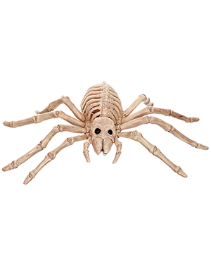 Halloween Costumes SE18215 Unisex Spider Skeleton at GotApparel