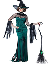 California Costumes 01574 Women The Grand Sorceress / Adult at GotApparel