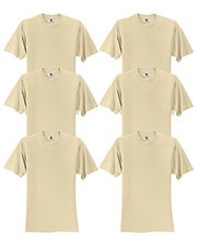 Fruit Of The Loom 3931 Men 5 Oz. 100% Heavy Cotton Hd T-Shirt 6-Pack at GotApparel