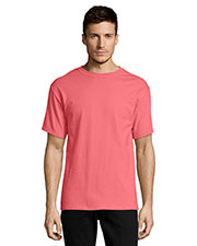 Hanes 5250T Men 6.1 Oz. Tagless  T-Shirt at GotApparel