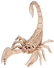 Halloween Costumes SE18214 Boys Morris  Scorpion Skeleton at GotApparel