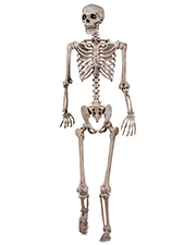 Halloween Costumes SE18724 Unisex   Skeleton Poseable at GotApparel