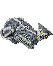 Halloween Costumes FM70781 Unisex Zombie Cat Prop 14 Inch at GotApparel