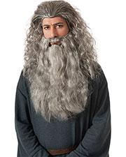 Halloween Costumes RU34035 Unisex Gandalf Wig/Beard Kit at GotApparel