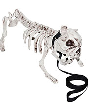 Halloween Costumes SS88770 Unisex Skeleton Dog at GotApparel